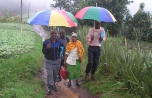 1. HH Survey DRC